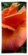 Orange Rose 1 Beach Towel