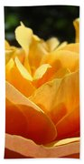 Orange Rose Art Prints Baslee Troutman Beach Towel