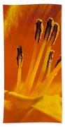 Orange Stamens Beach Sheet