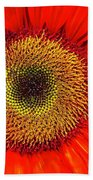 Orange Sunflower Beach Towel