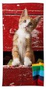 Orange Tabby Kitten In Red Drawer  Beach Sheet