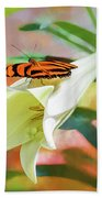 Orange Tiger Butterfly On Easter Lily Photograph By Wes Iversen