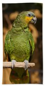 Orange-winged Amazon Parrot Beach Towel by Adam Romanowicz