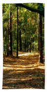Orangedale Path Beach Towel