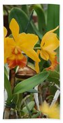 Orangepurple Orchids Beach Towel