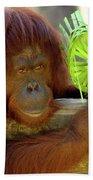 Orangutan Beach Towel by Carolyn Marshall