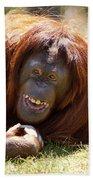 Orangutan In The Grass Beach Towel by Garry Gay