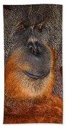 Orangutan Male Beach Towel