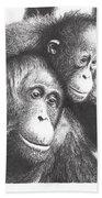 Orangutans Beach Towel