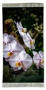 Orchid 1 Triptych Beach Towel