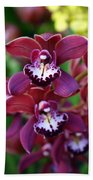 Orchid 20 Beach Towel