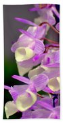Orchid 25 Beach Towel