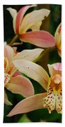 Orchid 255 Beach Towel