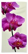 Orchid 26 Beach Towel