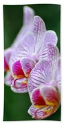 Orchid 30 Beach Towel