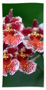 Orchid 31 Beach Towel