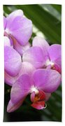 Orchid 4 Beach Towel