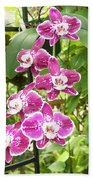 Orchid #4 Beach Towel