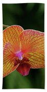Orchid Aliveness Beach Towel