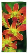 Orchid Blooms Beach Towel