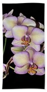 Orchid Blossoms I Beach Towel