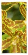 Orchid Drama Canvas Beach Towel