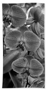 Orchid Glory Black And White Beach Towel
