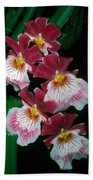 Orchid Group Beach Towel