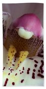 Orchid Like A Muzzle Beach Towel