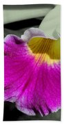 Orchid Of A Different Color Beach Towel