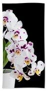 Orchid Phalaenopsis White Flower Beach Towel