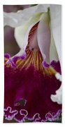 Orchid Ruffle Beach Towel