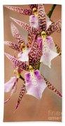 Orchid Stars Beach Towel