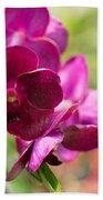 Orchid Vanda Ratchaburi Waxy Red Beach Towel