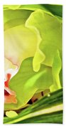 Orchid With Yellow And Green 2 Beach Towel
