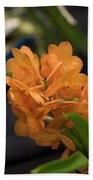 Orchid Yip Sum Wah Orange Beach Towel