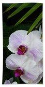 Orchids #1 Beach Towel