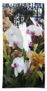 Orchids And Iron Beach Towel