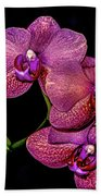 Orchids In Bloom Beach Sheet