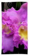 Orchids In Fuchsia  Beach Towel