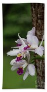 Orchids On A Tree Beach Towel