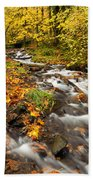 Oregon Autumn Beauty Beach Towel