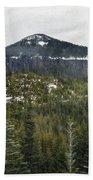 Oregon Cascade Range Forest Beach Towel