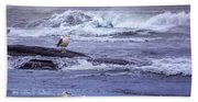 Oregon Coastal Morning Beach Towel