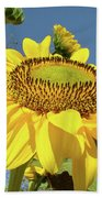 Oregon Gardens Silverton Sunflower Honeybee Baslee  Beach Towel