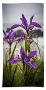 Oregon Iris At The Beach Beach Towel