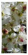 Ornamental Pear Beach Towel