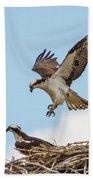Osprey Approach Beach Towel