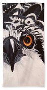 Osprey Eyes  Beach Towel