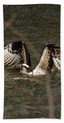 Osprey In The Creek Beach Towel